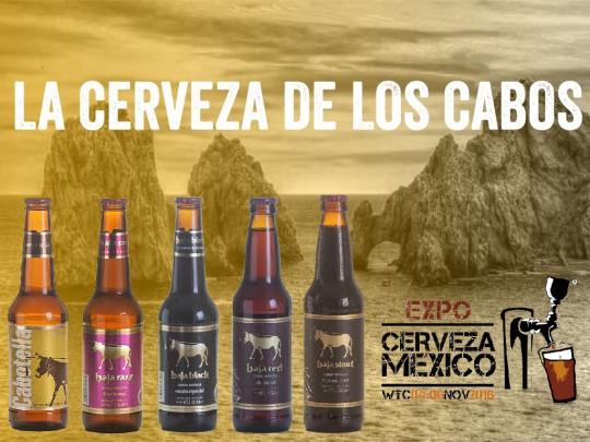 Baja brewing company for Jardin cerveza expo guadalupe 2016